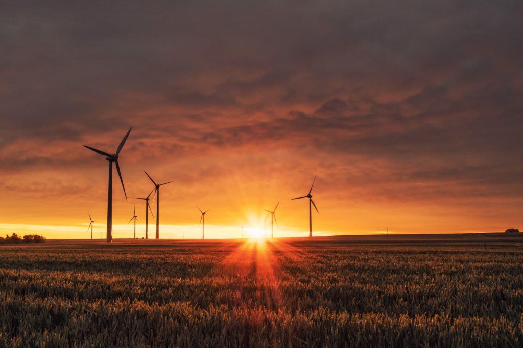 business sustainability strategies