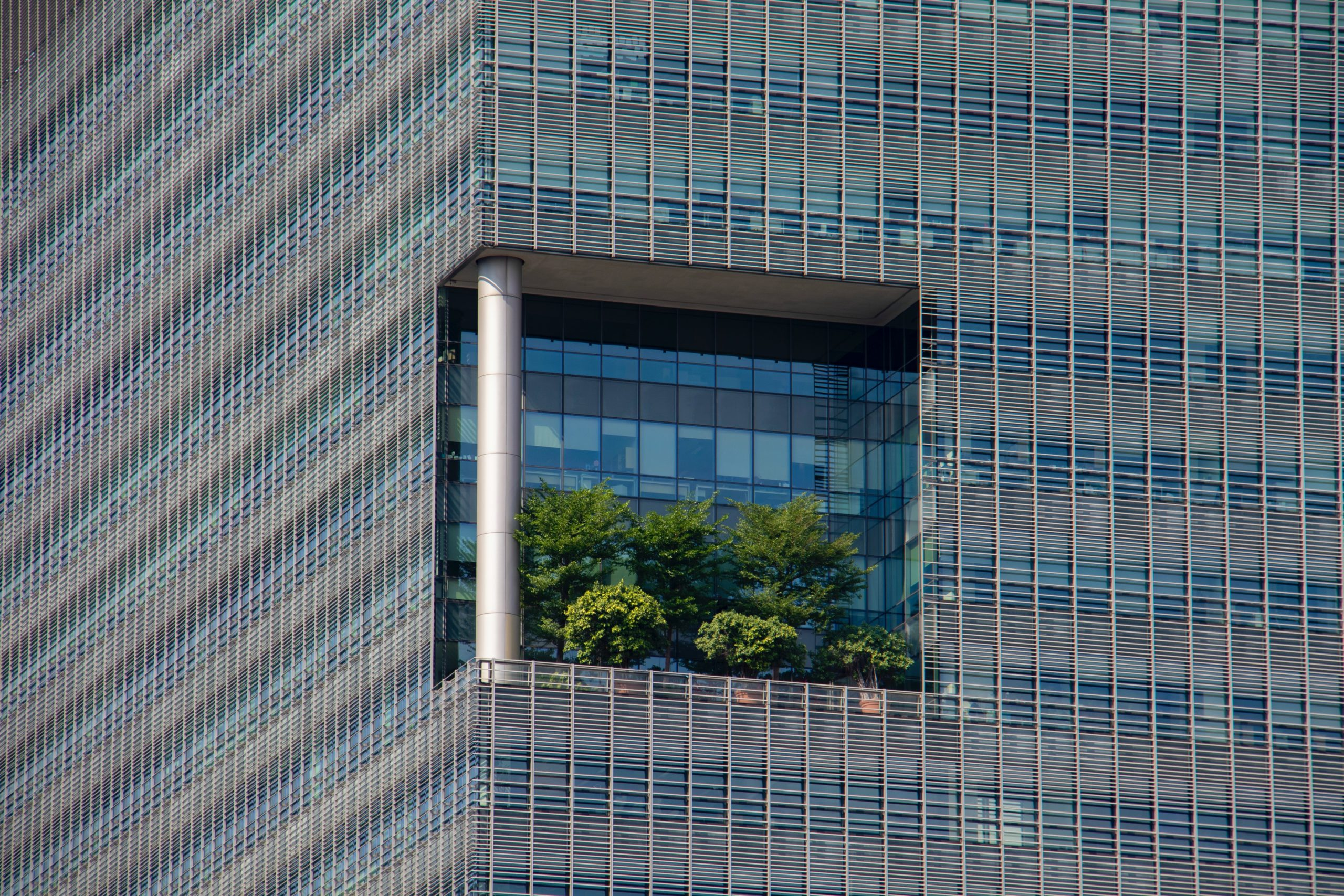Green Offices: Save Money, Attract Talent and Reduce Carbon Emissions